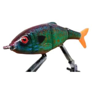 Swimmer Pumpkinseed   Hill Country Swimbaits